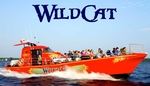1000 Islands & Seaway Cruises - WildCat Adventure